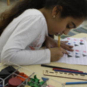 Cobb_School_Montessori_Lower_Elementary_