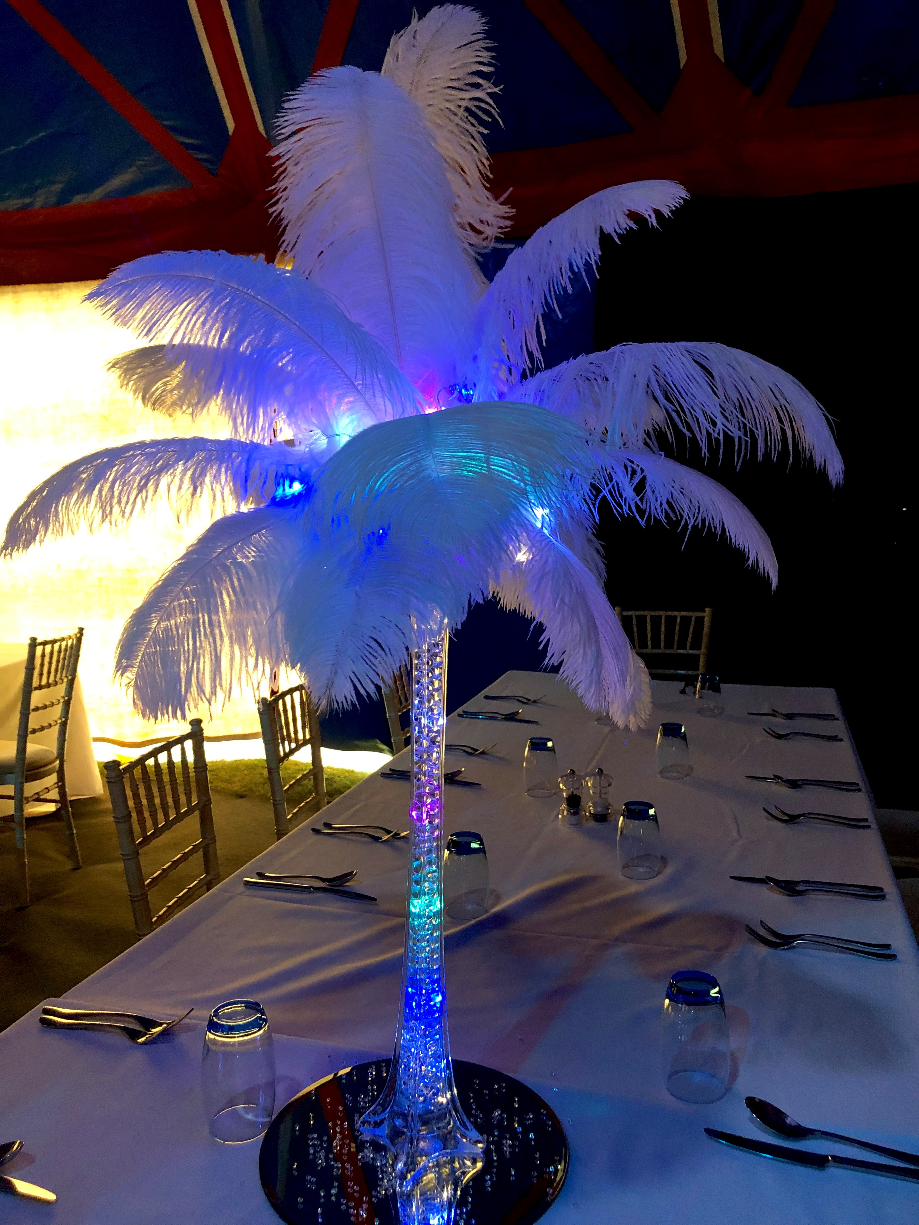 Feather Vase 'Bright Light' Hire in Hertfordshire