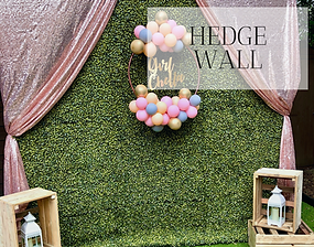 Hedge Wall hire in Hertfordshire, Bedfordshire, Essex & London