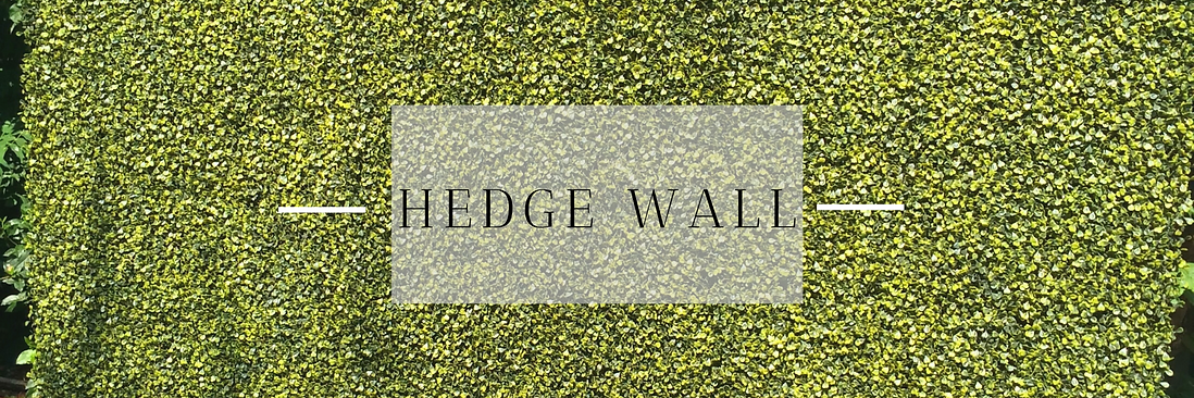 Hedge Wall in Hertfordshire, Bedfordshire, Buckinghamshire, Essex & London
