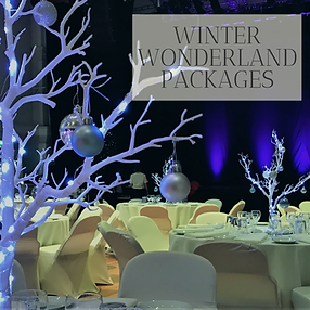 Winter Wonderland Packages in Hertfordhire, Bedfordshire, Buckinghamshire, Essex and London