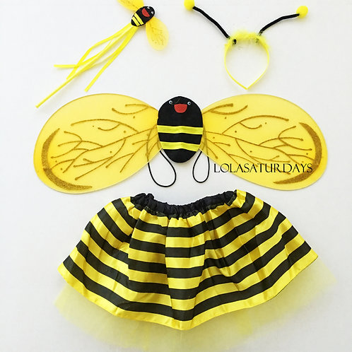 Bees and Lady Bugs dress up