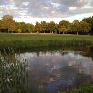Cardinal Hills Pond