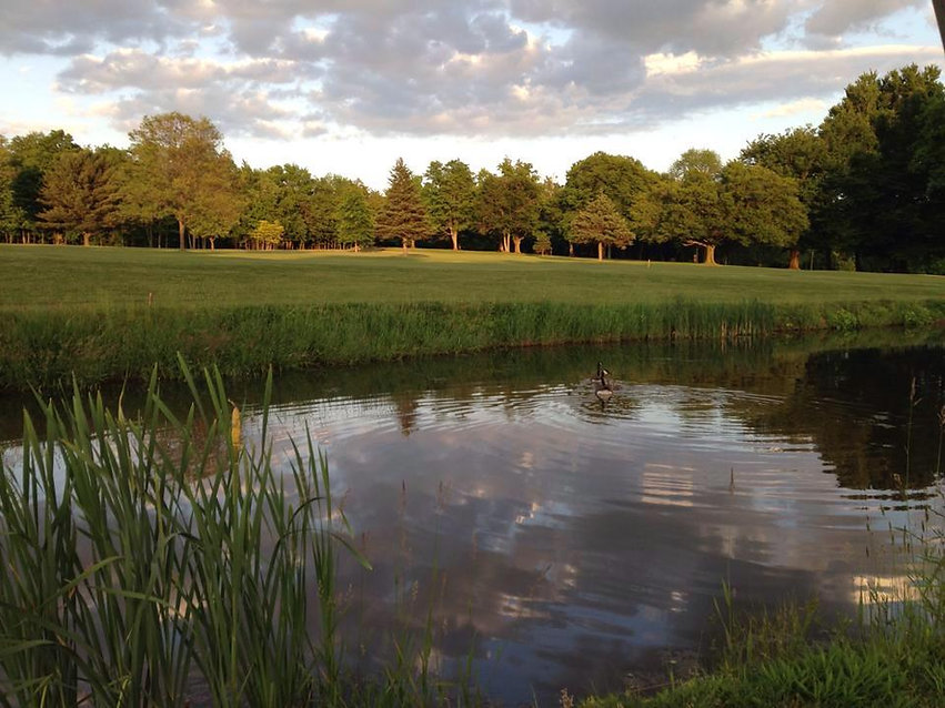 Cardinal Hills Pond.jpg