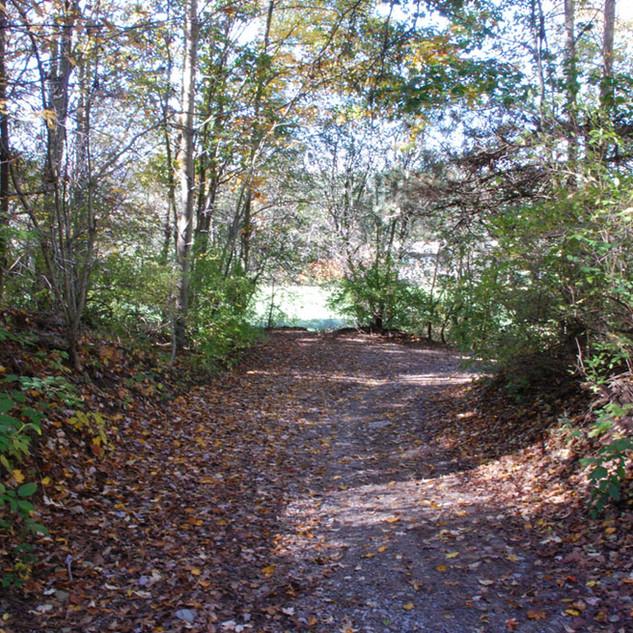 Cardinal Hills Trail