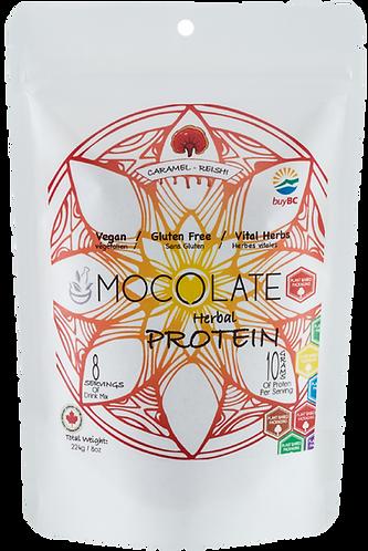 Mocolate Protein Reishi