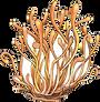 Cordyceps mushroom.png