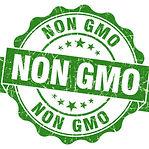 Non-Gmo-Green-Grunge-Seal-Isol-81399428_