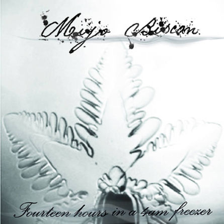 Mijo Biscan - 14 hrs in 4am freezer - Album Cover.jpg