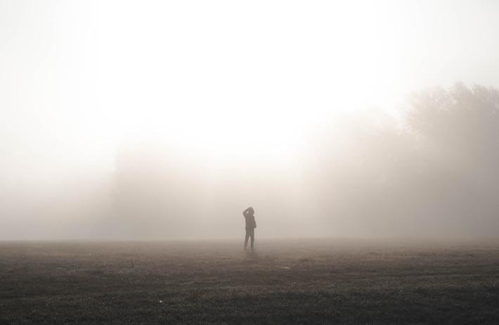 Philip's Field Of Fog