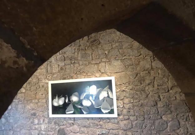 CASTILLO DE ARGÜESO. EXPO CARMEN VAN DEN