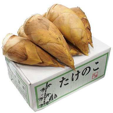 令和3年・中国産 生タケノコの販売が12月10日より開始いたします。