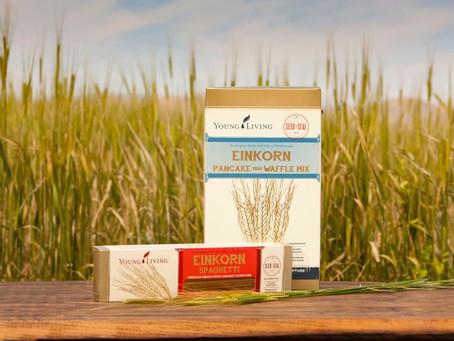 Is Einkorn Wheat good for gluten free folks?