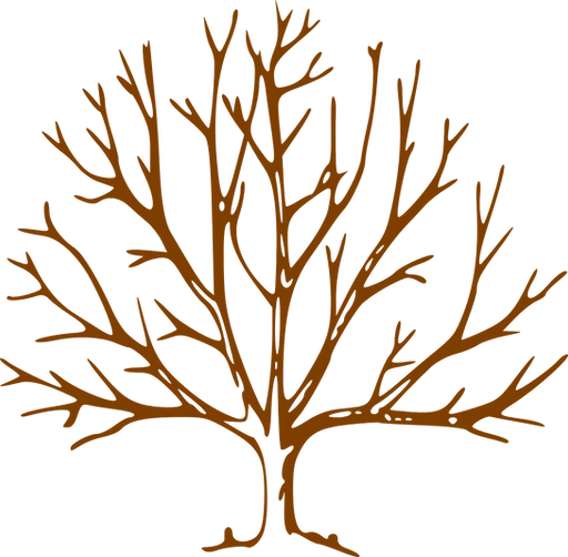 tree-311540_1280.png