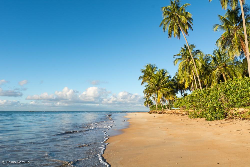 Praia do Toque em São Miguel dos Milagres