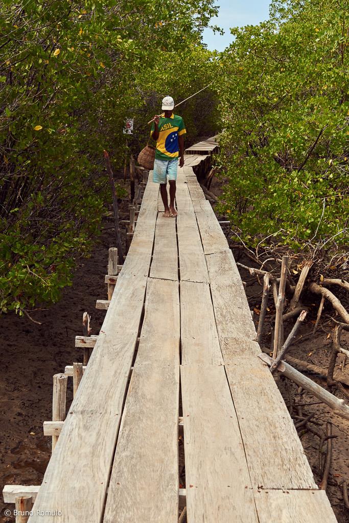Pescador na ponte de Tatuamunha, Porto de Pedras