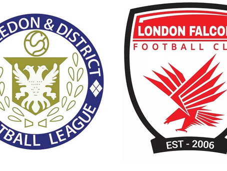 Gay-friendly team London Falcons to join Wimbledon and District Football League