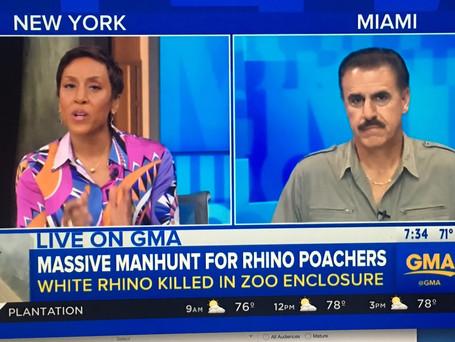 GMA Rhino Poaching.jpg