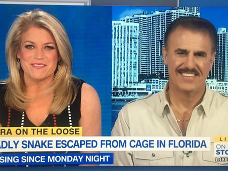 Headline News Cobra.jpg
