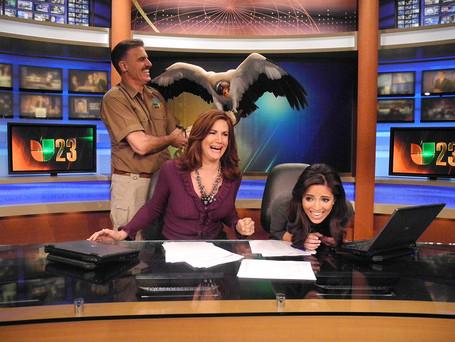 Univision News.jpg