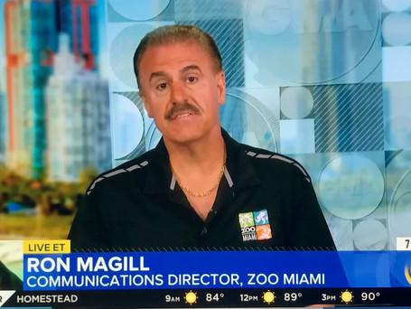 GMA Sea Lion Attack.jpg