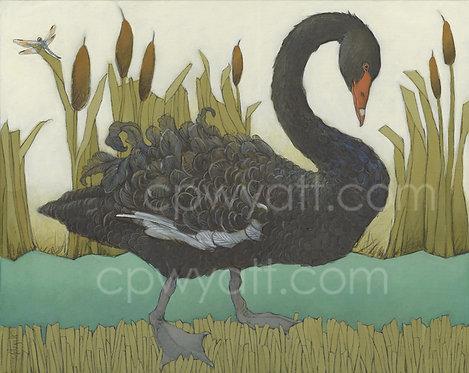 BLACK SWAN Signed Print by Artist Christina P Wyatt