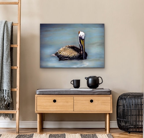 """Mr Pelican Blue"" by Kathryn Seguin Photography"