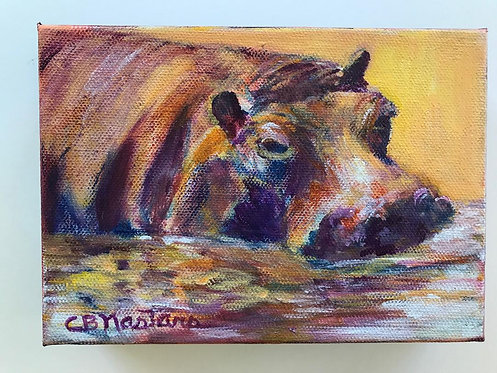 """HIPPO"" Original acrylic painting on canvas by Carole Nastars"