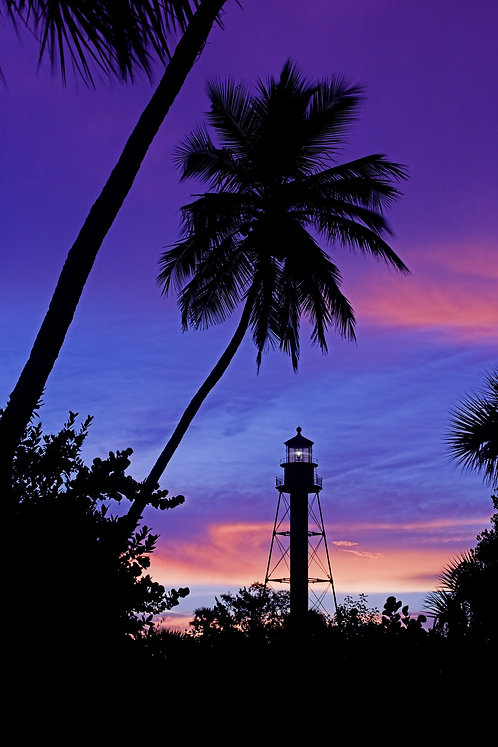 "Sanibel Lighthouse Palms III - a photograph by Buck Ward   (12""x18"")"