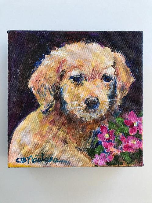 """PUPPY"" Original acrylic painting on canvas by Carole Nastars"