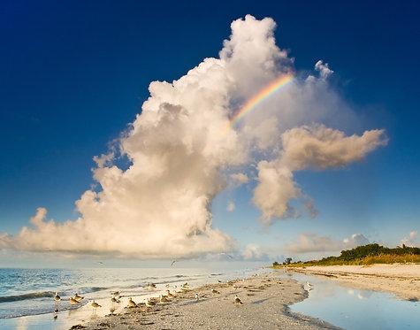 "Sanibel Beach Rainbow - a photograph by Buck Ward    (16""x20"")"