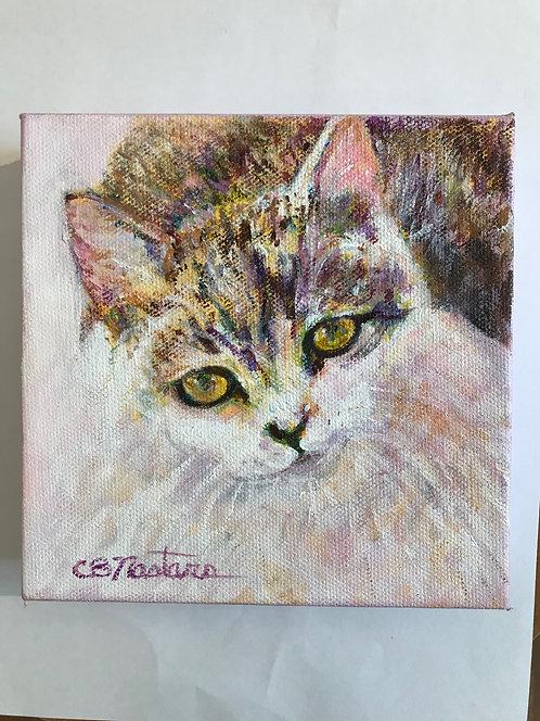 """CELEBRITY"" original 6""x6"" acrylic painting by Carole Nastars"