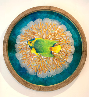 The flight of a feather...Anne Schroeder, Artist.