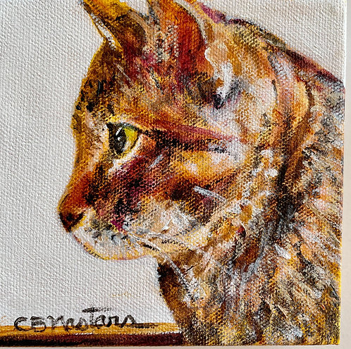 """ON THE LOOKOUT is an original 5""""x5"""" acrylic painting by Carole Nastars"""
