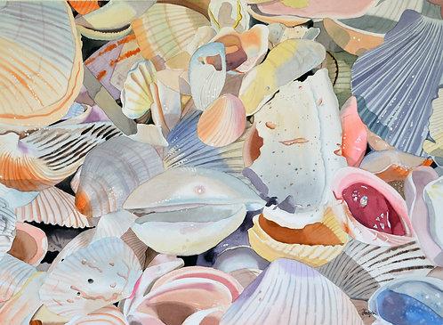 Shell life - Artist Shah Hadjebi - 15x20 giclee print