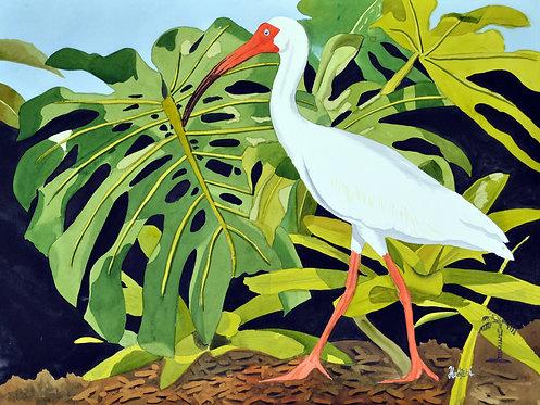 Ibis and Foliage - Artist Shah Hadjebi - 18x24 original watercolor - $850