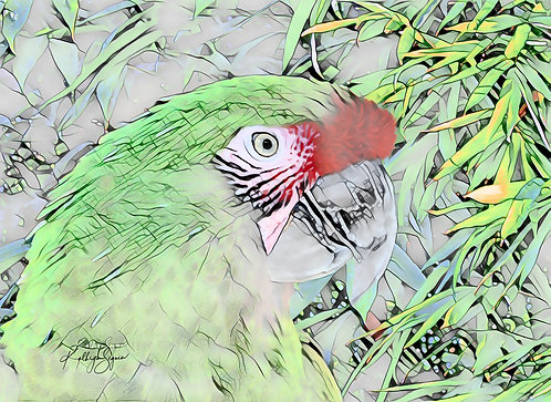 Mini Green Macaw Metal Print by Kathryn Seguin