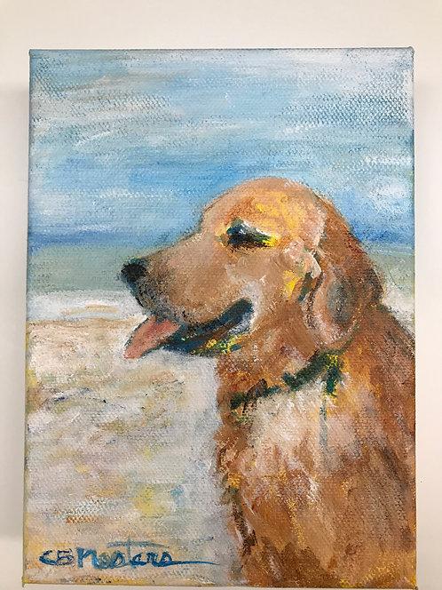 Breath of Fresh Air original painting by Carole Nastars