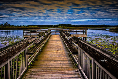 """The Dock"" by Kathryn Seguin Photography"