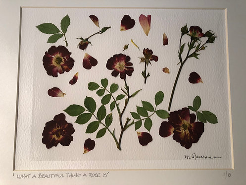 """""""What A Beautiful Thing A Rose Is"""" Pressed Flower Collage by Marianne Ravenna"""