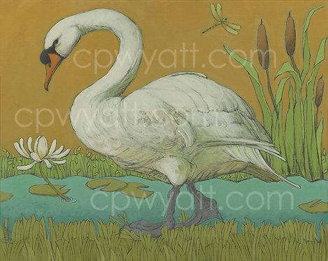MUTE SWAN Signed Print by Artist Christina P Wyatt
