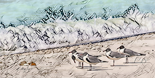 Mini Laughing Gull Print on Metal by Kathryn Seguin Photography