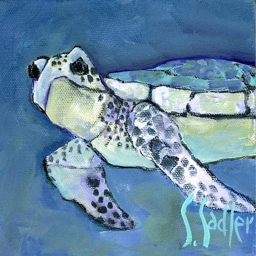 TURTLE BLUE print by Susan Sadler