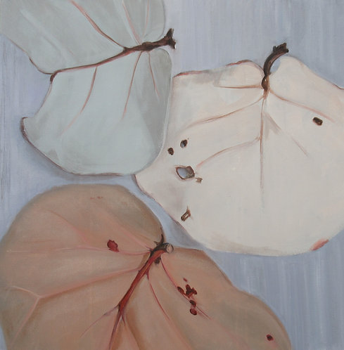 Marti Koehler Seagrape Leaf Trio Painting Reproduction 3 sizes art canvas giclee