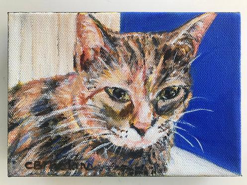 """Sweet As Honey"" acrylic painting by Carole Nastars"