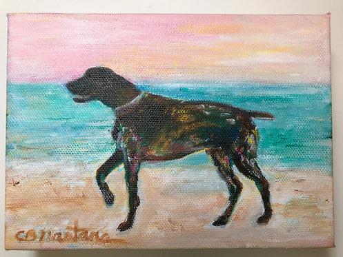 Beach Yoga painting by Carole Nastars