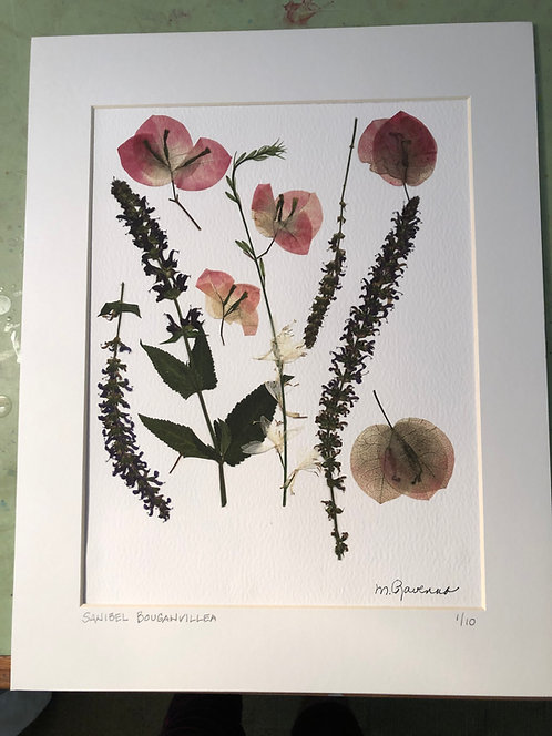"""Sanibel Bouganvillea"", Pressed Flower Collage by Marianne Ravenna"