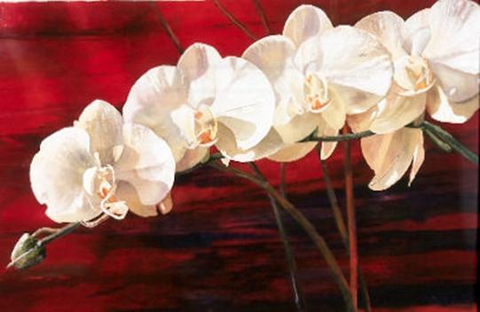 orchidandred.jpg