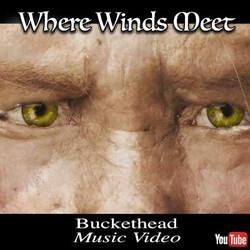 Where Winds Meet