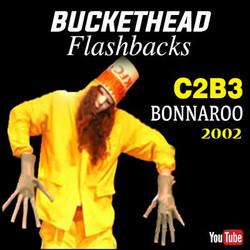 Bonnaroo 2002